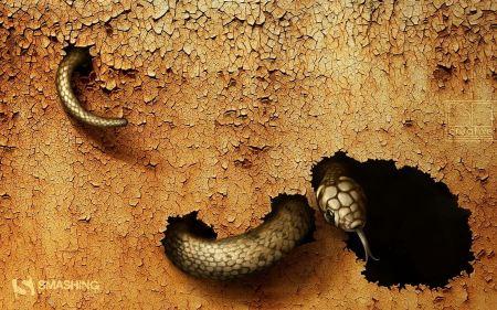 Free Dangerous Snake