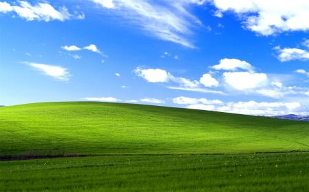 Free Windows XP Bliss Wallpaper