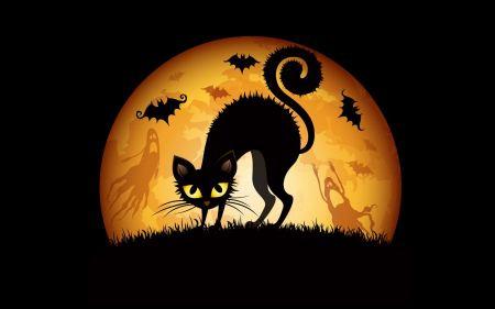 Free Halloween Cats Bats