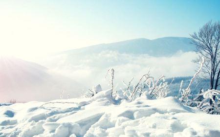 Free Snowy Mountains
