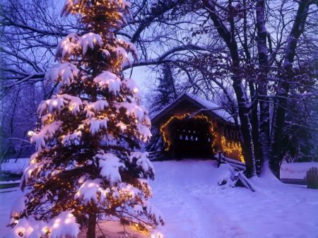 Free Beautiful Winter And Christmas Santa Wallpapers