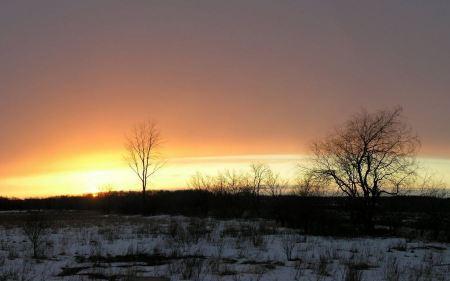Free Sunset in Winter Wallpaper