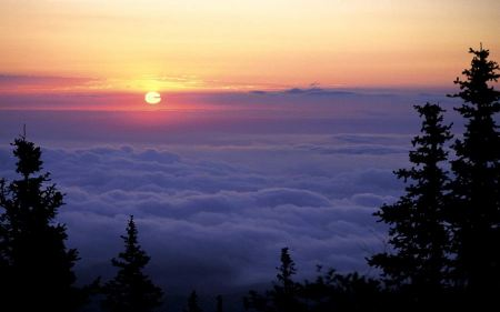 Free Above the Clouds