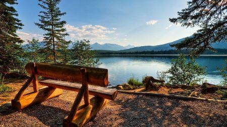 Free Bench Overlooking Peaceful Lake Wallpaper