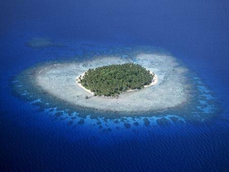 Free Coral Reefs Micronesia