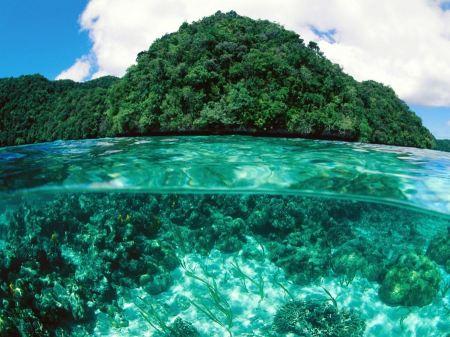 Free Limestone Island Palau