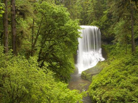 Free Rushing Waterfall