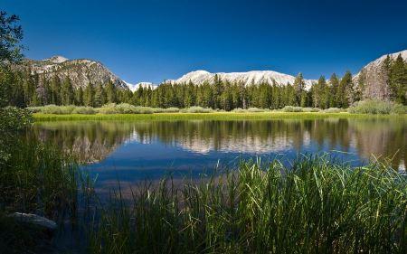 Free Quiet Mountain Lake Wallpaper