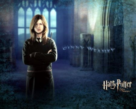 Free Ginny Weasley in Hary Potter