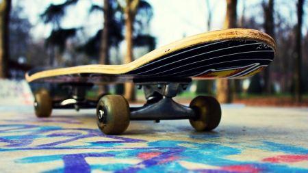 Free Lone Skateboard