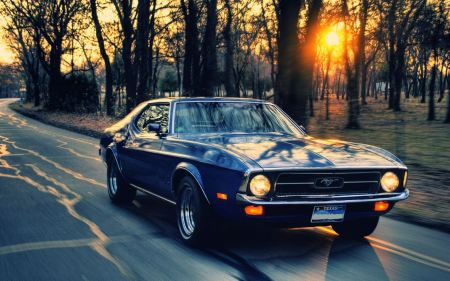 Free Sunset Sunrise Trees Ford Roads Ford Mustang Driving Old Cars Fee