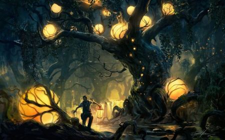 Free Dark Forest Trees Lights Lanterns