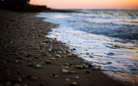 Free Long Island Shoreline