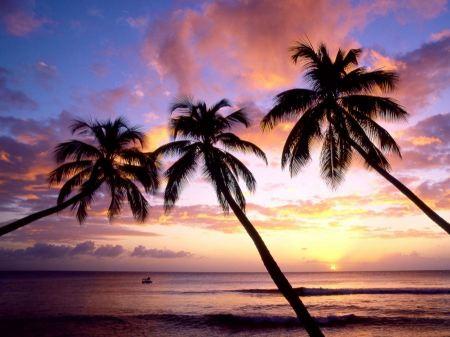 Free King's Beach West Indies