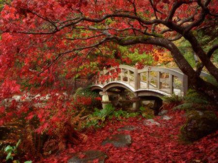 Free Japanese Garden British Columbia