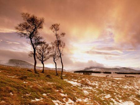 Free Glen Esk Scotland