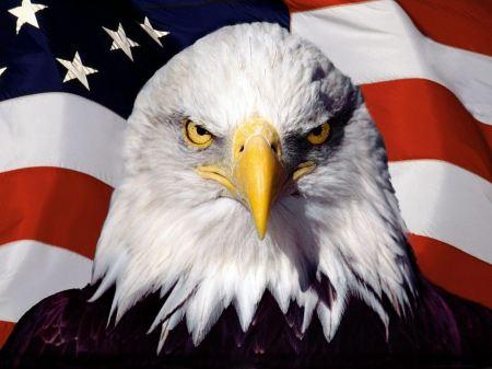 Free American Patriot